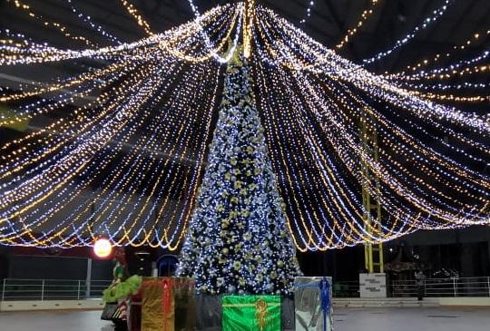Encendida del Arbol de Navidad 2020