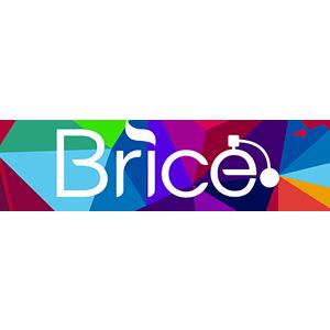 BRICE_r1_c1